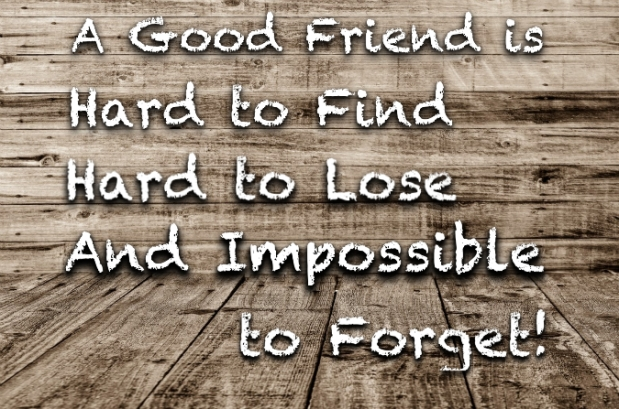 A Good Friend is…
