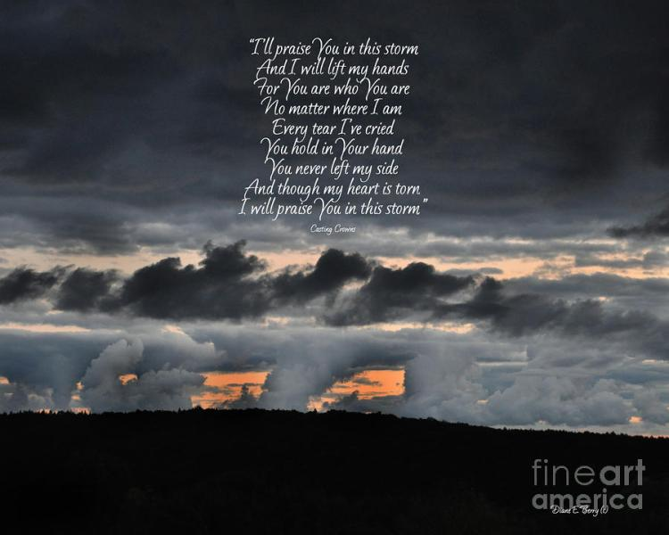 praise-you-in-the-storm-diane-berry